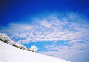 樹氷と青空の写真