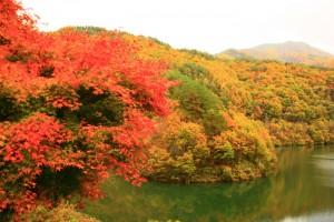 箕輪ダム(もみじ湖)