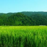 田園風景 鳥取県鳥取市青谷町