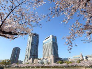 春の桜ノ宮