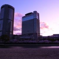 帝国ホテル大阪 桜写真コンテスト
