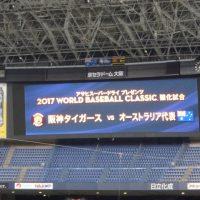 WBC強化試合
